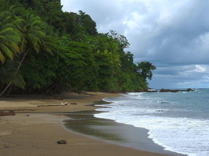 isla del cano, osa peninsula, costa rica